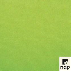 100 serviettes ouate lisse 38x38cm 2 feuilles vert anis