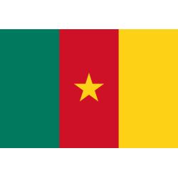 Drapeau Cameroun 90 x 150cm